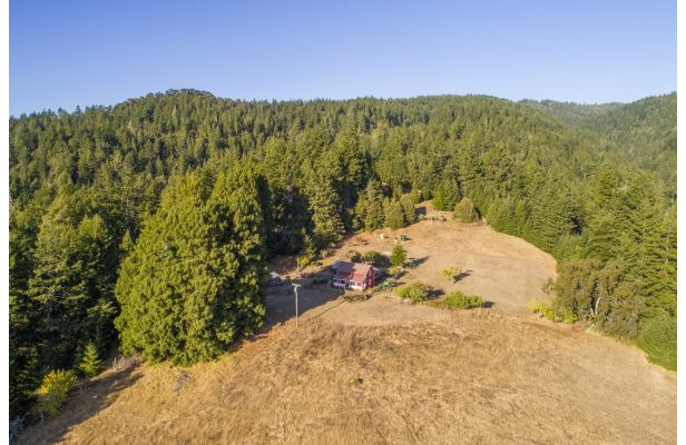 Crispin Redwood Property